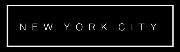 newyorkbanner